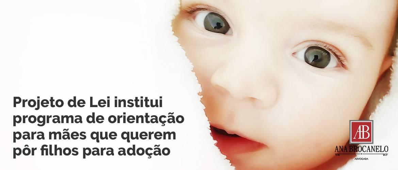 Projeto de Lei institui programa de orientação para mães que querem pôr filhos para adoção