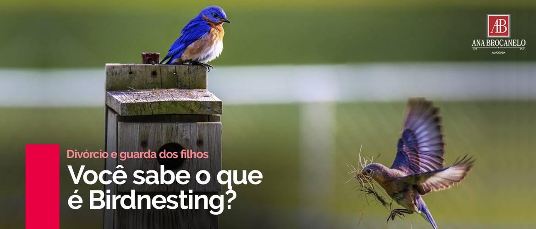 Você sabe o que é Birdnesting?
